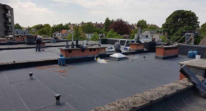 plat dak in wilrijk